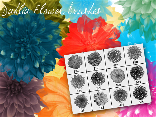 Beautiful flower PS brushes