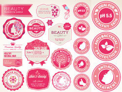 Exquisite beautiful sticker vector design-thu
