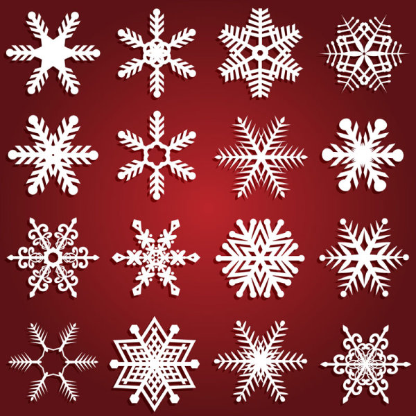 Beautiful snowflake patterns vector